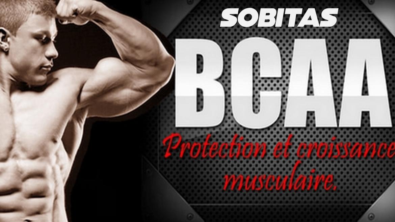 BCAA - protéine Tunisie - LES BCAA , C'EST QUOI ?